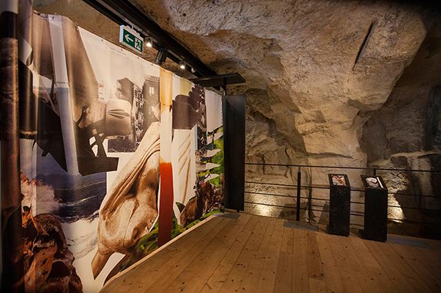 immagine6.-The-Cave,-veduta-della-mostra,-J3I5037